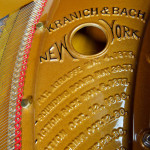Kranich Back Grand for sale