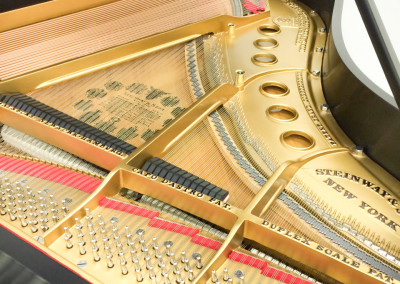 Steinway Model M, Interior View, Fully restored to Perfection