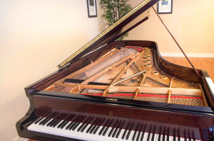Steinway Model D, 1886, 85 Note, High Polished Lacquer -10