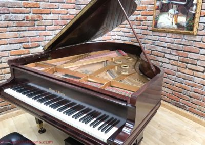 Mason & Hamlin, 1923, Model AA, Mahogany Semi Gloss Finish Varnish-8